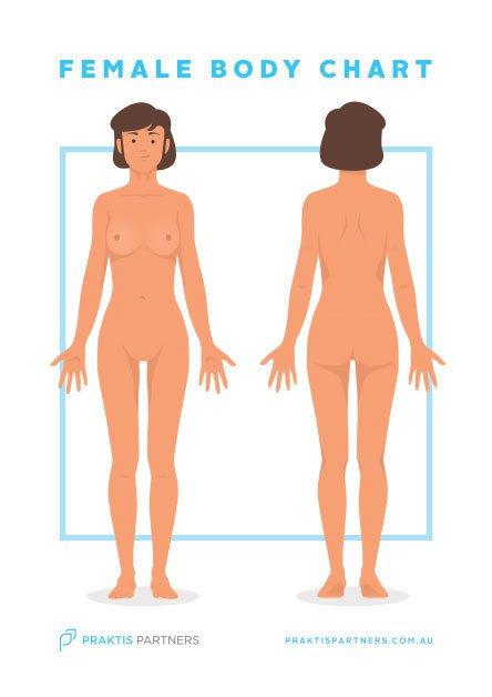 female-body-chart-poster